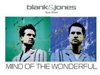 Видео клип: Blank and Jones feat Elles - Mind Of The Wonderful